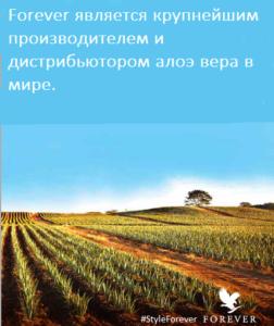 продукция Алоэ Вера Форевер